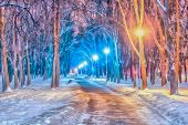Watercolor Cityscape. Winter Evening. Alley With A Path In The Snowdrifts Among The Trees. Bright Li poster