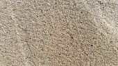 Top View Of The Sandy Beach. Background With Copy Space And Visible Sand Texture. Background Of Fine poster