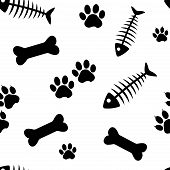 Animal Seamless Pattern With Fish Bones And Cat Paw Track, Bones And Dog Paw Track Isolated On White poster