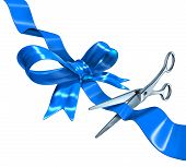 Blue Ribbon Cutting
