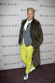 LOS ANGELES - FEB 19:  Cameron Silver arrives at the BVLGARI Celebrates Elizabeth Taylor's Jewelry C