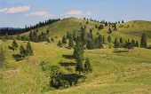 pic of velika  - Velika planina mountain pastureland - JPG