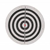 Success Concept, Target On Dartboard