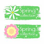 Spring Collection With Flowers Signs, Green Drawn Labels