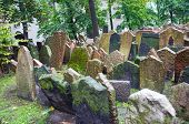 stock photo of rabbi  - The Old Jewish Cemetery in Prague Czech Republic where many notable Jewish leaders are buried including Rabbi Judah Loew The Maharal - JPG