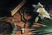 foto of easter lily  - The Triumph Passion Crucifixion and Resurrection - JPG