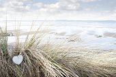 stock photo of blue things  - single wooden love heart in dunes on an Irish beach in summer - JPG