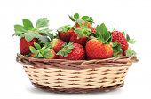 closeup of a pile of appetizing strawberries in a basket on a white background