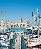 Touristic Port of Trani. Apulia. poster