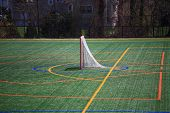 Lacrosse Goal poster