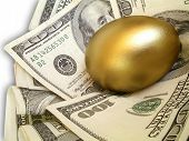picture of nest-egg  - golden nest egg - JPG
