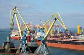 pic of trade  - Yellow cranes and container ship in Odessa sea port - JPG