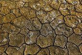 image of arid  - Dry arid soil with cracks - JPG