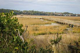 stock photo of inlet  - Atlantic coastal wetlands and boardwalk at low tide - JPG