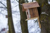 A Wooden House For Birds On The Tree In The Forest. Place To Feed And To Find Food In Winter Time Fo poster