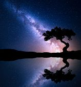 Night Scene With Milky Way And Old Tree On The Mountain Near The Lake With Sky With Stars Reflection poster