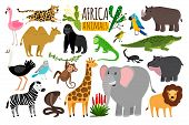 African Animals. Various Wildlife Animals Of Africa, Vector Monkey Or Marmoset And Leopard, Parrot A poster
