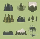 Tree Outdoor Travel Pine Silhouette Logo Coniferous Natural Badge Tops Pine Spruce Branch Cedar And  poster