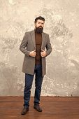 Trendy Man With Beard. Modern Life. Male Fashion Model. Mature Businessman. Casual Style. Brutal Bea poster