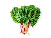 Bunch Of Swiss Chard Leafves Isolated On White Background. Fresh Swiss Rainbow Chard With Yellow, Re poster