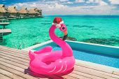 Christmas summer vacation pool float pink flamingo wearing santa hat travel background winter holida poster