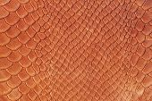 Texture Of Genuine Matte Rough Leather Close-up, Trend Pattern, Imitation Of The Skin Of Scaly Exoti poster