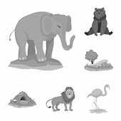 Vector Illustration Of Zoo And Park Sign. Set Of Zoo And Animal Stock Vector Illustration. poster