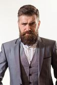 Attractive Bearded Man Portrait. Stylish Handsome Business Man. Handsome Man With Beard. Male Fashio poster