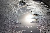 Sunny Street After The Rain. Reflection, Glare Of The Sun In Puddles And Wet Asphalt, Asphalt With H poster