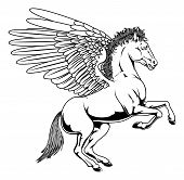 picture of perseus  - Pegasus horse with wings rearing on its back legs in black and white outline - JPG