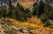 stock photo of beartooth  - Fall color in the Beartooth Mountains in Wyoming - JPG