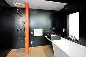 Bathroom Black