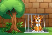 foto of animal cruelty  - Illustration of a tiger inside the animal cage - JPG