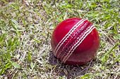 image of cricket ball  - bright red cricket ball on patchy grass lawn - JPG