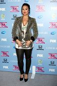 LOS ANGELES - NOV 4:  Demi Lovato at the 2013