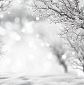 image of freeze  - winter background  - JPG