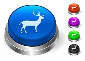 Deer Icons on Round Button Collection