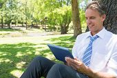 Smiling businessman using digital tablet while leaning on tree trunk in park