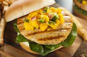 picture of mahi  - Mahi Fish Sandwich with Salsa and Lettuce