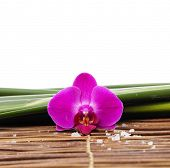 Macro of red orchid with pile of white salt on bamboo mat on leaves background
