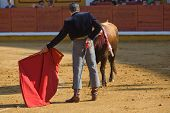 picture of bullfighting  - The bullfighter calls out the bull with the muleta during a bullfight in Badajoz Spain - JPG