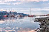 foto of tierra  - Ushuaia Beagle Channel - JPG