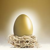 foto of nest-egg  - Big gold nest egg with a golden background - JPG