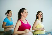 pic of pregnancy exercises  - Group of young pregnant women doing relaxation exercise on exercising mat - JPG