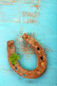 image of wooden horse  - Old horse shoe - JPG