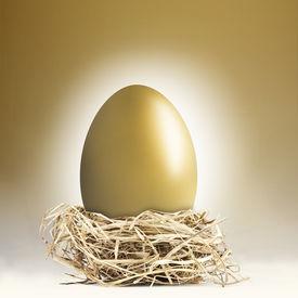 foto of nest-egg  - Big gold nest egg with a golden background - JPG