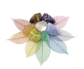 image of wicca  - Chakra colored crystals placed on an arrangement of rainbow colored skeleton leaves to form a flower shape - JPG