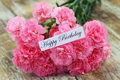 picture of carnations  - Happy birthday card with pink carnation flowers - JPG