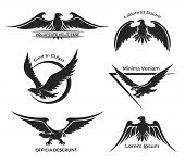 picture of eagles  - Set of black eagle logo for business - JPG