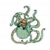 picture of octopus  - Hipster Octopus Color isolated in white background - JPG